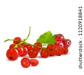 fresh  nutritious and tasty red ... | Shutterstock .eps vector #1120918841