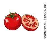 fresh tomato vector... | Shutterstock .eps vector #1120947101