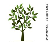 green tree with leaves. vector... | Shutterstock .eps vector #1120961261