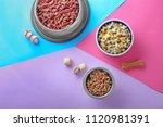 Stock photo bowls with pet food on color background 1120981391