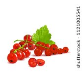 fresh  nutritious and tasty red ... | Shutterstock .eps vector #1121005541