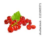 fresh  nutritious and tasty red ... | Shutterstock .eps vector #1121005571