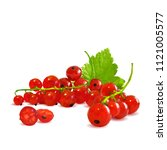fresh  nutritious and tasty red ... | Shutterstock .eps vector #1121005577