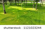 watering the lawn in a clean... | Shutterstock . vector #1121023244