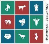 mammal icon. collection of 9... | Shutterstock .eps vector #1121247827