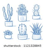 set of mixed succulents and...   Shutterstock .eps vector #1121328845