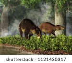 """these are eohippus  or """"dawn... 