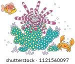 striped long spine sea urchin ... | Shutterstock .eps vector #1121560097