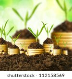 Small photo of Golden coins in soil with young plant. Money growth concept.