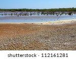 Cuba   Ancon Peninsula. Dry...