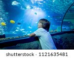 little boy  kid watching the... | Shutterstock . vector #1121635481