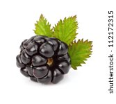 Ripe blackberry with leaf - stock photo