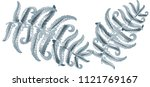 fern frond herbs  tropical... | Shutterstock .eps vector #1121769167