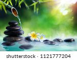 plumeria flowers in japanese... | Shutterstock . vector #1121777204