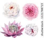 handpainted watercolor flowers... | Shutterstock . vector #1121788715