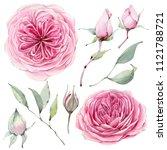 handpainted watercolor flowers... | Shutterstock . vector #1121788721
