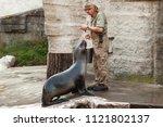 vienna  austria   november 3 ... | Shutterstock . vector #1121802137