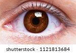 red eye of a woman | Shutterstock . vector #1121813684