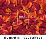 3d realistic autumn leaves with ... | Shutterstock .eps vector #1121859611