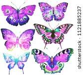 beautiful butterflies  set... | Shutterstock . vector #1121885237