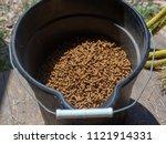 Horse Feed In A Bucket
