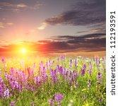 Flower Sunset - Fine Art prints