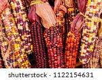 Field Corn Sometimes Referred...
