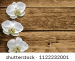 orchid flowers on natural brown ... | Shutterstock .eps vector #1122232001