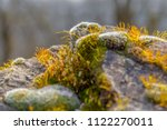 low angle closeup shot showing... | Shutterstock . vector #1122270011