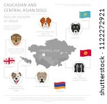 dogs by country of origin.... | Shutterstock .eps vector #1122272921