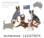 dogs by country of origin.... | Shutterstock .eps vector #1122273074