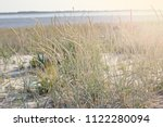 vegetation on the beach and a... | Shutterstock . vector #1122280094