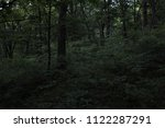 depths of the dark forest.... | Shutterstock . vector #1122287291