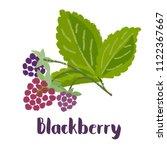 raspberry   vintage... | Shutterstock .eps vector #1122367667