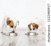 two dogs eating from bowl. pets ... | Shutterstock . vector #1122480917