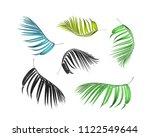 Green Paln Leaf White Background - Fine Art prints