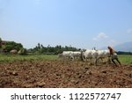 Small photo of SENGOTTAI, INDIA - MAY 01 : Unidentified farmer plows a farm land by conventional method where a plow is attached to bullocks on May 01, 2011 in Sengottai, Tamilnadu, India.
