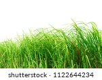 green grass isolated on white... | Shutterstock . vector #1122644234