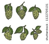 vintage designs set with hops... | Shutterstock . vector #1122705131
