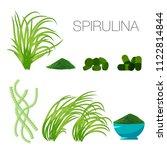 set of spirulina algae  tablets ... | Shutterstock .eps vector #1122814844