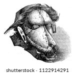 a mask among the savages of the ... | Shutterstock . vector #1122914291