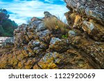 rock and grass  formation in... | Shutterstock . vector #1122920069