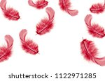 beautiful red feathers falling... | Shutterstock . vector #1122971285