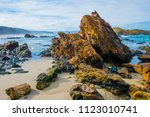 mallacoota red and green  the... | Shutterstock . vector #1123010741