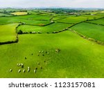 aerial view of endless lush... | Shutterstock . vector #1123157081