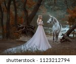 the princess met a unicorn in... | Shutterstock . vector #1123212794