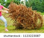 Woman gardener removing...