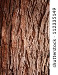 Bark Tree Texture Full Frame I...