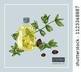 jojoba essential oil. bottle... | Shutterstock .eps vector #1123368887