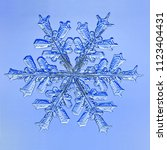Small photo of Micrograph of an actual snowflake, photographed during a Vermont Winter storm